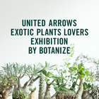 UNITED ARROWS EXOTIC PLANTS LOVERS EXHIBITION BY BOTANIZE