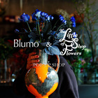 EVENT:Blumo & The Little Shop of Flowers POP-UP SHOP